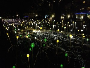 "Bruce Munro's ""Field of Light"" at Discovery Green"